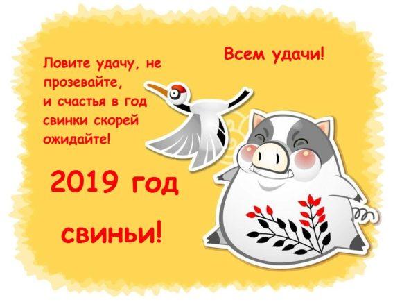новый год 2019 как встречать что готовить